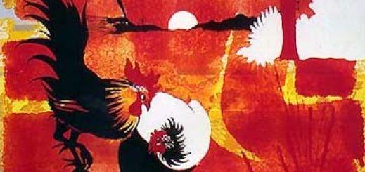 hoeysbird