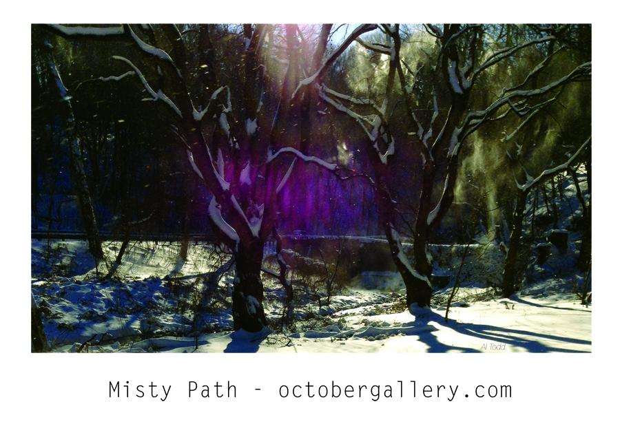 misty path.indd
